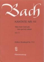 Bach, J.S. : Cantata BWV 111, Was mein Gott will, das gscheh allzeit, per Canto e Pianoforte