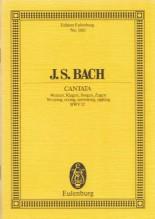 Bach, J.S. : Cantata BWV 12, Weinen, Klagen, Sorgen, Zagen. Partitura tascabile